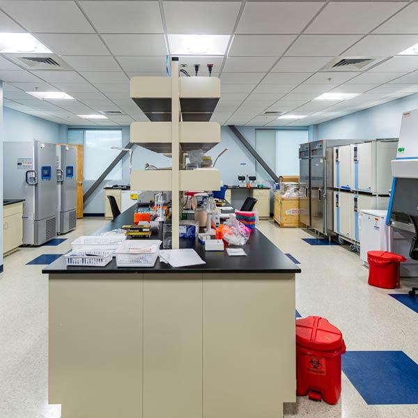 Lab suite